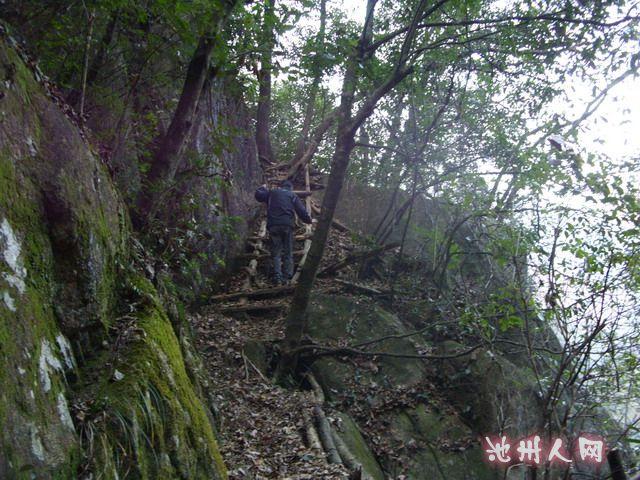 九黄公路最高处:楼台山
