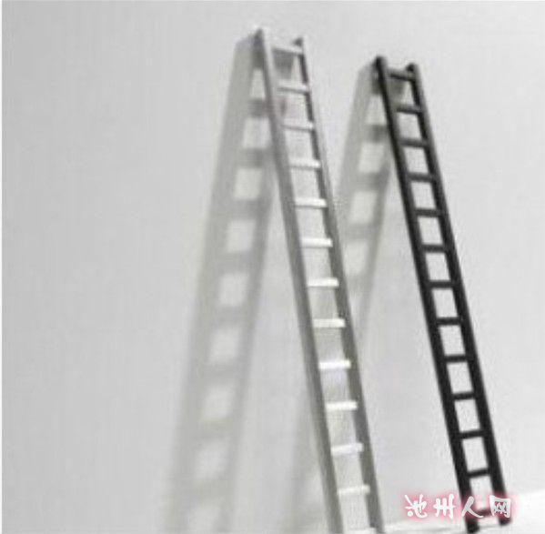 喜欢《梯子不用的时候请横着放》这个标题