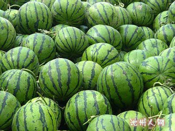 [转载]——西瓜的营养价值,选购方法! - 斩云剑 - 斩云剑的博客