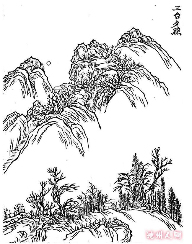 杏花树下铅笔画