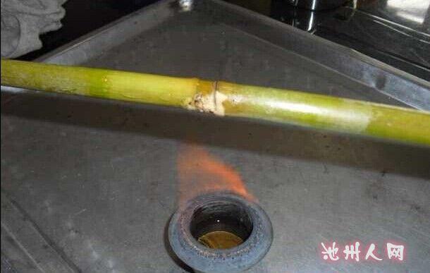 制作竹子鱼竿 - 快乐垂钓