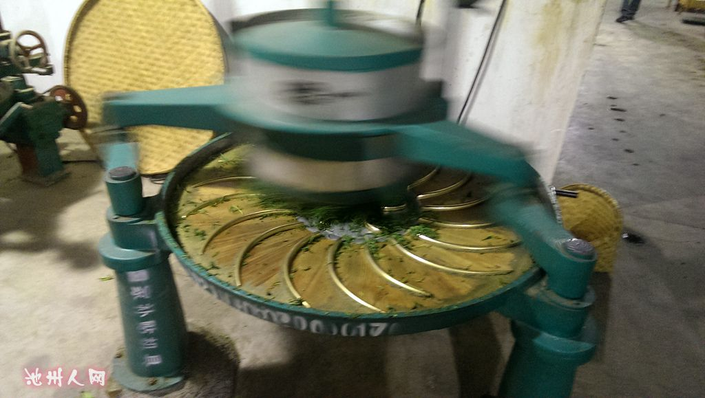 图片来解说霄坑茶叶的制作过程