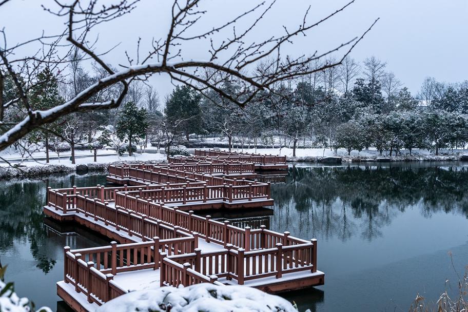 作品命名:梅雪相约九曲桥,摄影:陈世华;电话13905663666.jpg