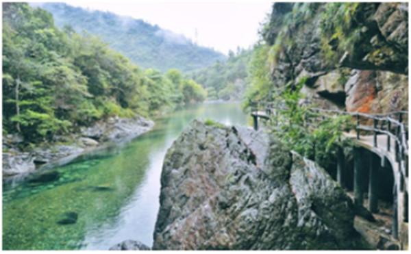 3摄影:左冷禅师 (2).jpg