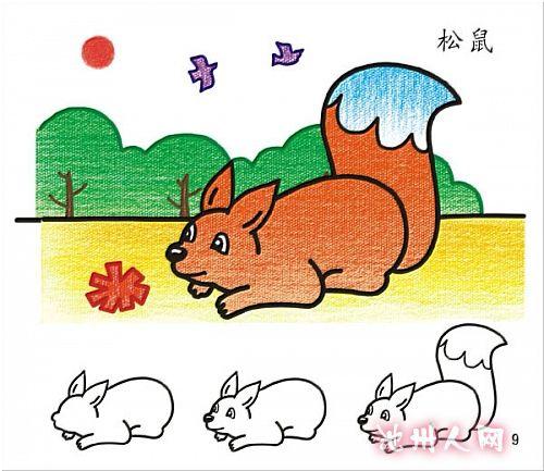 儿童学简笔画:小松鼠