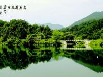 秋浦河风景【1P】